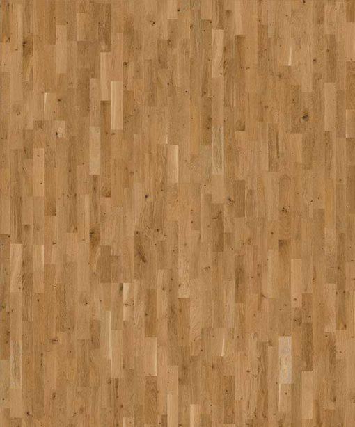 Oak Erve