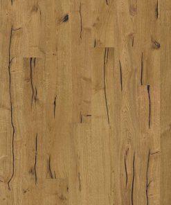Oak Finnveden