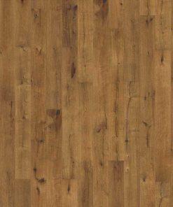 Oak Tan