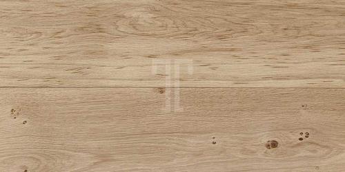 Sand Plank